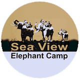 sea view elephant camp phuket